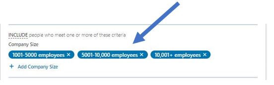 LinkedIn Job title segmentation example #3